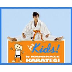 Kimono Kamikaze Kids